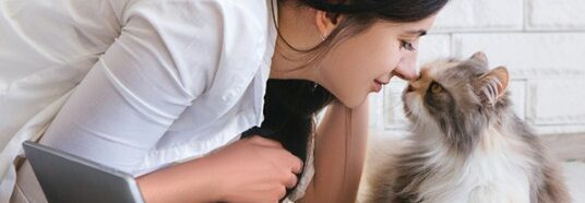 Pet and Animals Care