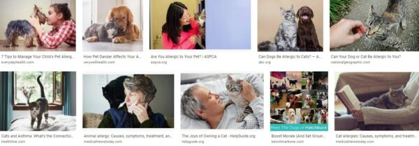 Americans Fight Like Cats And Dogs with Pet Allergies