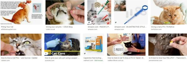 Cats and pills tablets for dogs