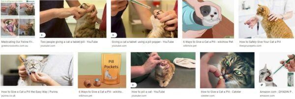 Cats And Pills – Tablets