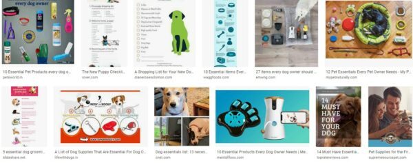 Essential Supplies for a Pet Owner