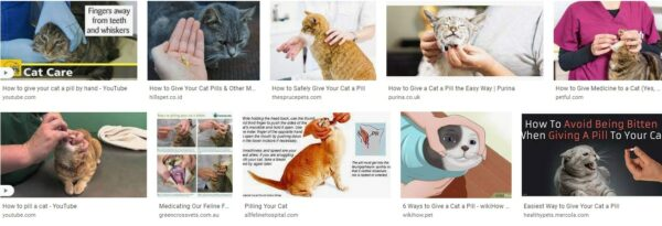 Giving Your Cat A Pill