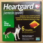 Revolution Plus For Puppies And Kittens